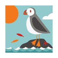 Puffin Framed Print | Jo Thearle